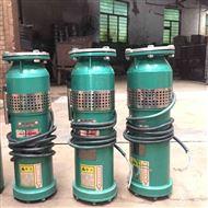 QS10-54/3-3充水式潜水电泵