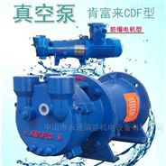 玻璃行业加工抽气泵佛山水泵厂防爆真空泵