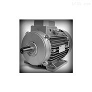 赫尔纳-供应意大利 FIMEC三相电机