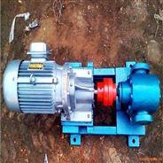 2CG齒輪泵泊頭華潮油泵自吸性良好